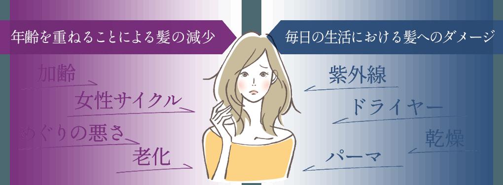 年令を重ねることによる髪の減少・毎日の生活における髪へのダメージ